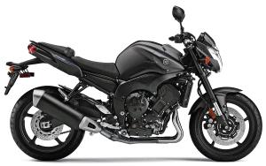 Yamaha FZ8 03