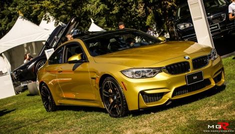 2014 Luxury Supercar Weekend-57 copy